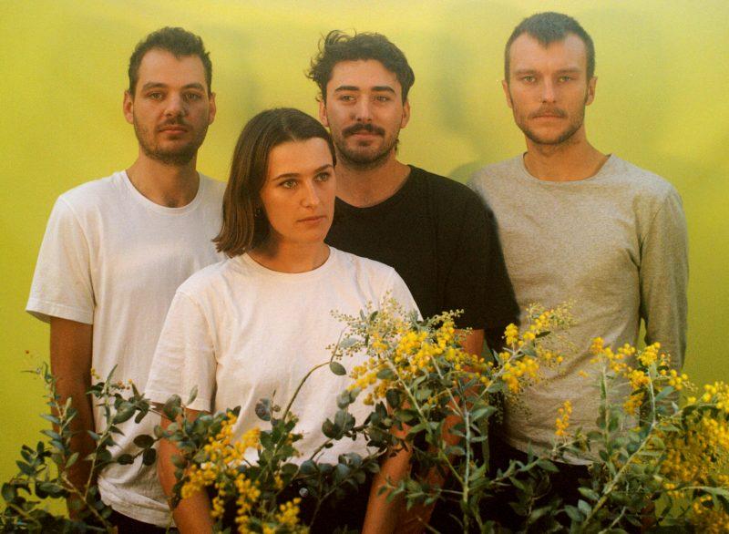 Le clip du jour avec The Wattles et le titre «The Noise»