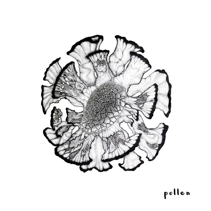 Cap sur Tel-Aviv avec Sasha Daniel sur le titre Indie-Pop nommé «Pollen»
